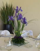 Purple Star - Wedding Centrepiece