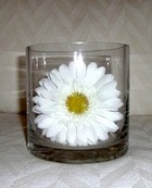 CYLINDER GLASS VASE 5 X 5 inches