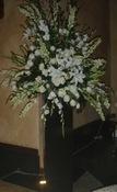 Heavenly - Vancouver Wedding Ceremony