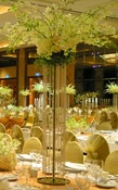 Majestic Tall - Wedding Centrepiece
