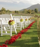 Petals on Two Sides of the Aisle (rental)