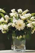 Sunshine - Wedding Flowers
