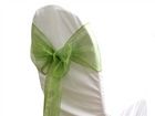 Willow Organza Sash